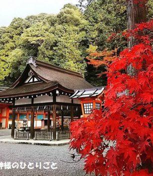 八百万神さま全員集合!京都・吉田神社