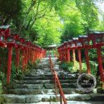 京都ツアー受付を開始します(満席)