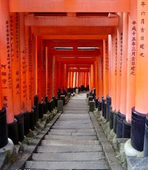 京都寺社ツアーの準備と稲荷山の不思議な話