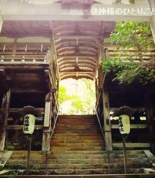 【京都・鞍馬寺】護法魔王尊と龍伝説の秘密