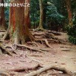 京都ツアー報告・貴船&鞍馬編