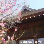 明石 御厨神社で日本の神様の謎を追う